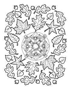 * Mandala: Paddenstoelen & herfstbladeren...