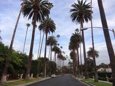 things to do in beverly hills - Google Search