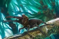 Image result for beetle rider