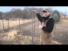 Pruning Young Fruit Trees.wmv - YouTube