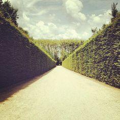 #vscocam #Versailles #france