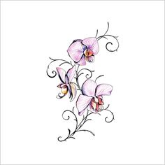 Frog Butterfly Tattoo | ... butterfly, cross, fairy, flower, dragon and sun tattoos. Free Tattoo