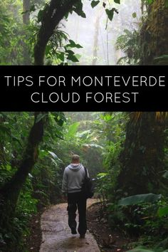 Going to Monteverde in Costa Rica? Here are some tips for visiting the Cloud Forest, including which guide to choose.