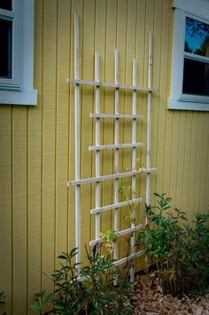 I could actually make this for my sweet peas and scarlet runner beans