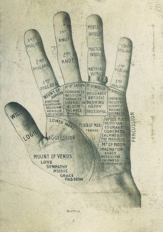 Read your hands {<3}