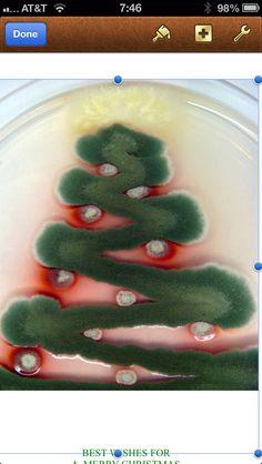 Nurse Christmas Tree Ornaments