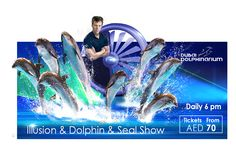 Dubai Dolphinarium, Most Beautiful Animals, Valentine Treats, Once In A Lifetime, Days Out, Dolphins, The Good Place, Exotic, This Is Us