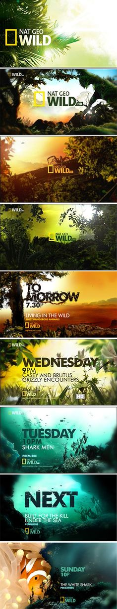 Nat Geo Wild on air branding 4
