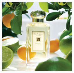 Reminiscent of the scent of limes carried on a Caribbean sea breeze, Lime Basil & Mandarin has become a modern classic for men and women. Fresh limes and zesty mandarins are undercut by peppery basil and aromatic white thyme in this alluring signature blend. Ordering the room spray as soon as it is back in stock!