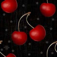 1000+ images about cherries with black background on ...