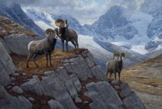 The Jackson Hole Art Auction is recognized as one of the premier art and auction events in the country, specializing in renowned past masters and contemporary western, wildlife, sporting, figurative and landscape art. Sheep Paintings, Wildlife Paintings, Wildlife Art, Animal Paintings, Animal Graphic, Landscape Artwork, Sports Art, Western Art, Whimsical Art