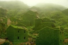 Delve into the haunting beauty of an abandoned fishing village in Eastern China, almost completely consumed by nature following the departure of its residents more than 20 years ago.