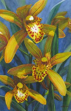 """Cymbidium Orchids"" watercolor on paper 15.75 x 25 inches ©2015 Karen Sioson"