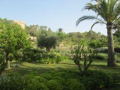 The lush gardens at Castell Son Claret Hotel and Spa Lush Garden, Golf Courses, Sidewalk, Spa, Gardens, Sidewalks, Pavement, Walkways, Tuin