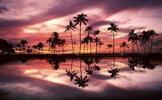 Pink Sunset, Beach, Hawaii, Honolulu, Pink, Sunset