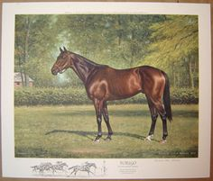FOREGO Race Horse Richard Reeves Limited Ed. Print 1978
