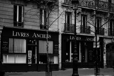 Christina Nelson - Antique bookstore