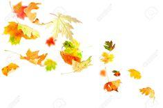 small autumn leaves tattoo - Google Search