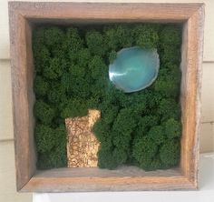 Moss Art, Moss Painting, Reindeer Moss, Preserved Moss, Agate by MoonLightHappy on Etsy
