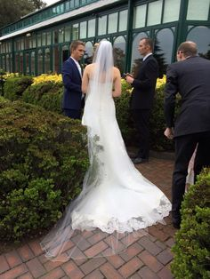 Cathedral Veil, Train, Wedding, Dress