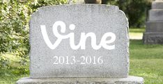 What Happened To Vine?  #Vine #wht https://gazettereview.com/2018/04/what-happened-to-vine/