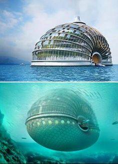 Otel Salyangoz tekne?