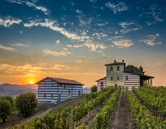 """Check out new work on my @Behance portfolio: """"Berlucchi wineries in Franciacorta."""" http://be.net/gallery/32720561/Berlucchi-wineries-in-Franciacorta"""
