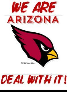 Arizona Cardinals Fans are the Best fans! Go Cards! Football Love, Football Memes, Nfl Football, Football Stuff, Arizona Cardinals Shirts, Cardinals Nfl, Az Cards, Phoenix Bird Tattoos, State Of Arizona