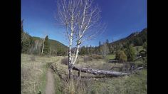 Cow Creek Trail Rocky Mountain National Park Bridal Veil Falls In and Ou...