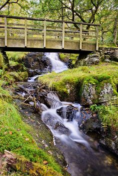Footbridge over stream, Snowdonia National park, Wales