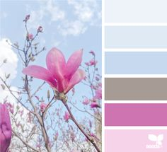 Hue Color, Color Combos, Colours That Go Together, Design Seeds, Creative Colour, Color Pallets, Summer Colors, Spring Time, Color Inspiration
