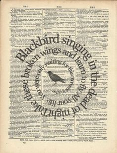 Blackbird singing in the dead of night. Take these broken wings and learn to fly. All you life, you were only waiting for this moment to arrive. ~The Beatles music quote Les Beatles, Beatles Art, Beatles Songs, Song Lyrics Art, Lyric Art, Book Page Art, Book Art, Ringo Starr, Stuart Sutcliffe