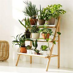 Bildresultat för odlingshylla inne