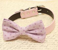 Purple Dog Bow Tie, Bow attached to dog collar, Pet wedding accessory, dog lovers, Purple wedding, dog birthday gift, dog collar, Polka dots