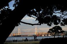 山下公園 みなとみらい 横浜 サンセット 夕焼け sunset ベイブリッジ 海