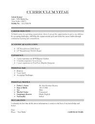 cv format example download