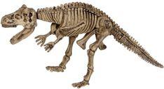 Dětské dinosauří vykopávky Spiegelburg – Carnotaurus - Skibi Kids Spinosaurus, Tyrannosaurus Rex, Ice Age, T Rex, Prehistoric, Predator, Fossils, Reptiles, Lion Sculpture