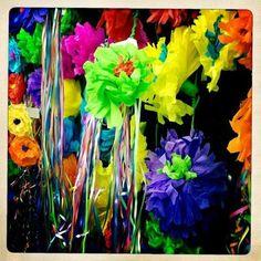 Beautiful Fiesta colors. Photo: Kristin G.