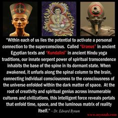 """""""Within each of us lies the potential to activate a personal connection to the superconscious. Called """"Uraeus"""" in ancient Egyptian texts and """"Kundalini"""" in ancient Hindu yoga traditions, our innate serpent power of spiritual transcendence inhabits the bas Spiritual Enlightenment, Spiritual Wisdom, Kundalini, Awakening Quotes, Spirit Science, A Course In Miracles, Spiritus, Black History Facts, Dark Matter"""