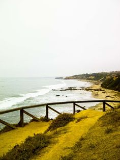 Crystal Cove Hike - Orange County, CA