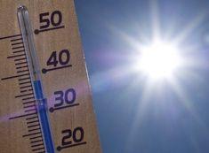 Guía para vencer a la ola de calor y no morir en el intento... www.farmaciafrancesa.com