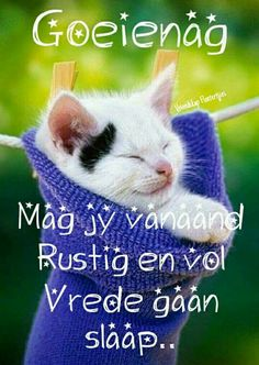 Good Night Wishes, Good Night Quotes, Good Morning Good Night, Good Knight, Good Night Sleep Tight, Goeie Nag, Afrikaans Quotes, Godly Man, Special Quotes