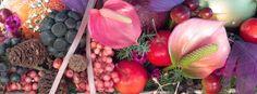 Arte Floral Revista Clip ...   Fotografía de flores   Arte con flores