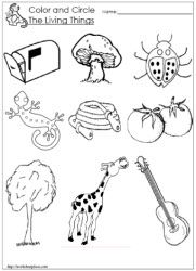 Living and Non Living Things Worksheets Worksheets