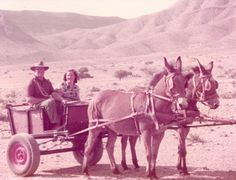 In the old days  - #Namibia #Africa #Transport