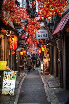 Shinjuku Alley, Tokyo, Japan