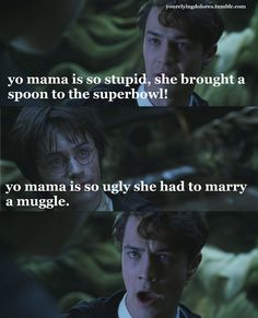 ...yeah...funny but doesn't really make sense b/c Harry is also a half blood....