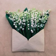 mail time - flowers in a small envelope