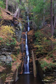 Silver Thread Falls. Delaware. Must find this, didn't realize there were falls in this flat state!
