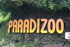 Mendez, Cavite Paradizoo is a themed park with zoo that is now a known destination in the south. Tagaytay Philippines, Consumer Culture, Miniature Horses, Ostriches, Farm Theme, Tourist Spots, Philippines Travel, Camels, Peacocks